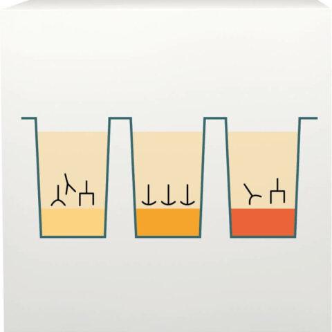 ImuPro processus laboratoire 2